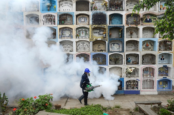 A specialist fumigates the Nueva Esperanza graveyard in the outskirts of Lima on January 15, 2016. Health officials fumigated the largest cementery in Peru and second largest in the world to prevent Chikunguya and Zika virus, which affect several South American countries. Picture by Ernesto Benavides | AFP/Getty Images